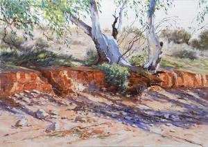 Adrian Johnson-Creekbed Shadows Flinders Rangers-oil-46x66cm