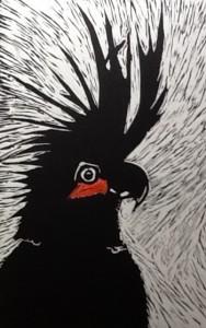 Bev Mitchell-Symons--Cockatoo